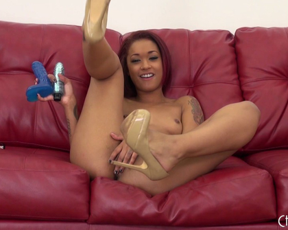 Skin Diamond - Wildoncam com 21 01 2014